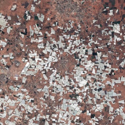 4.14 Greenhouses, Taddert Morocco